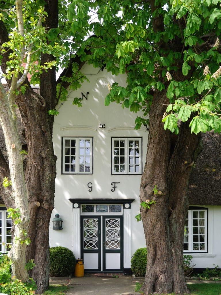 Haus-Wohnung-mieten-kaufen-Buchholz-in-der-Nordheide-Borkenhagen-Immobilienmakler